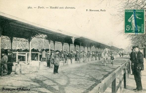1327155582-Paris-Marche-aux-chevaux-1