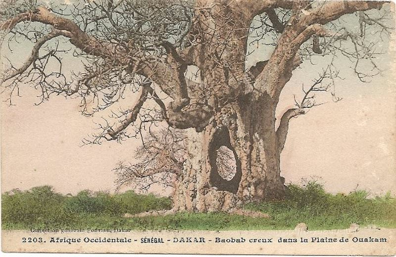 baobab la rochelle view cruises for this destination la rochelle lock jason eaton photo via. Black Bedroom Furniture Sets. Home Design Ideas